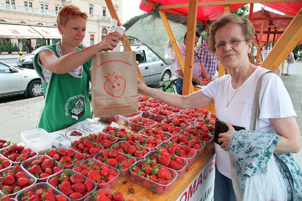zagrebačke jagode (Foto: Saša Zinaja /Medijska mreža)