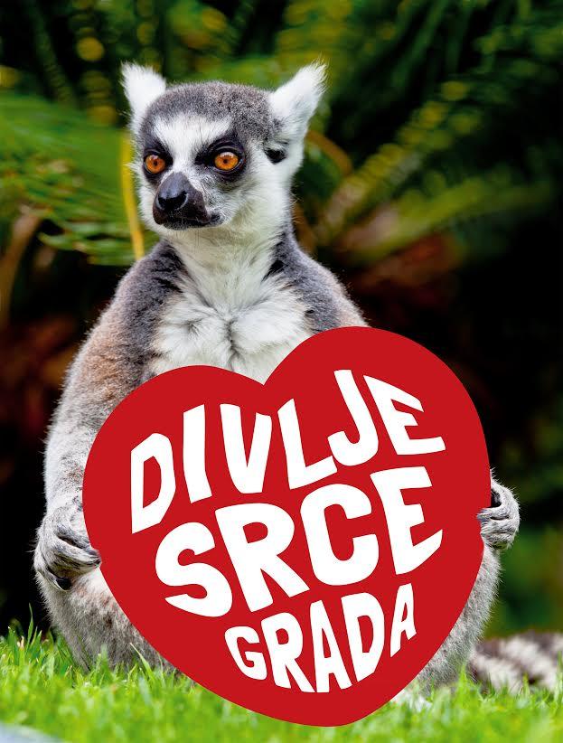 Lemur i Divlje srce grada