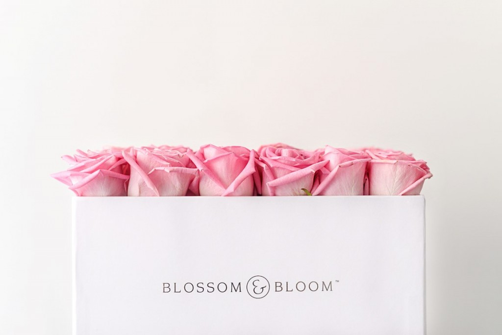 Blossom Bloom 12