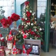 Vrtni-centar-Zrinjevac_bozicne-dekoracije