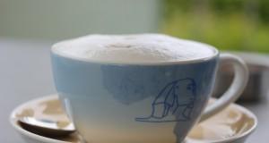 Kava i čokolada u HDLU