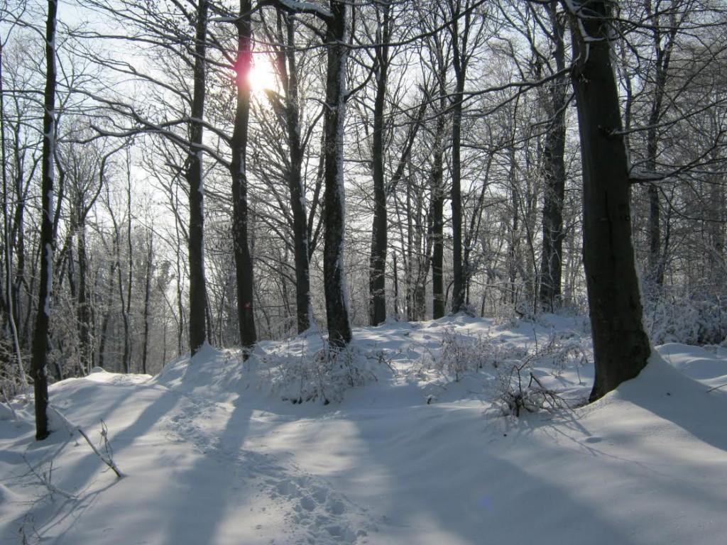 Sljeme zimi