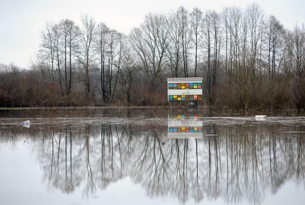 Srdjan Vrancic - kategorija Priroda i okoliš