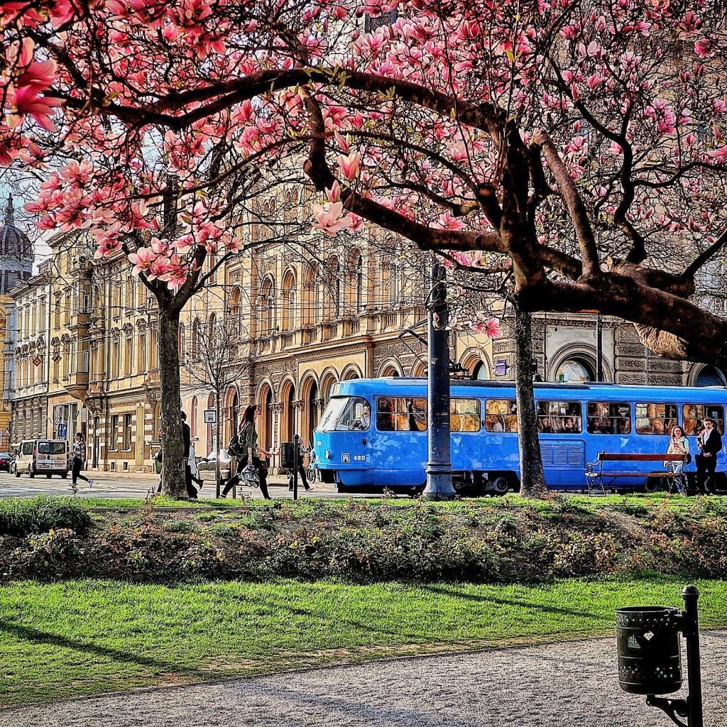 Tramvaj na Trgu kralja Tomislava